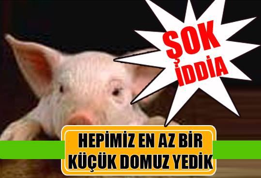 ilaçlarda domuz katkı maddesi ile ilgili görsel sonucu
